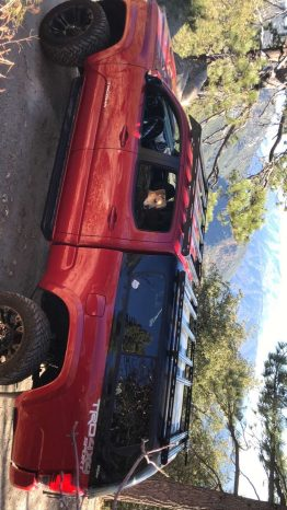 3rd gen Tacoma camper shell with prinsu top rack full